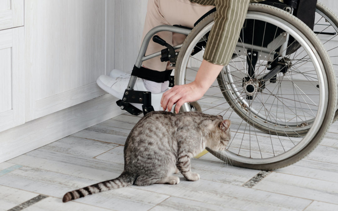 The Best Flooring Options for Accessibility